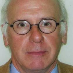 Professor Richard  Marks